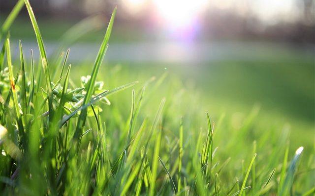 Op zoek naar de beste tuinmachines